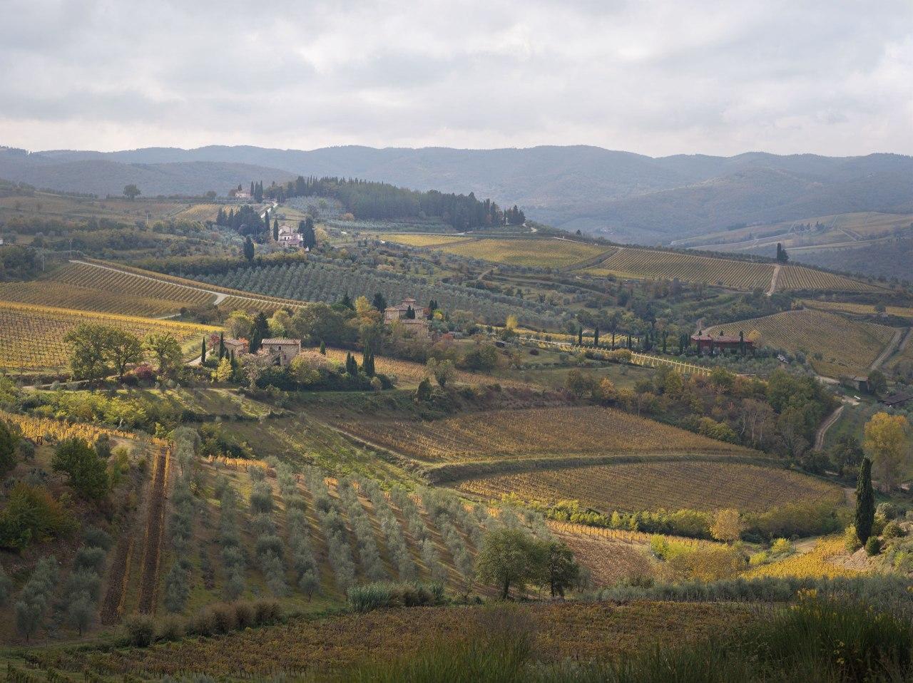 Tuscany, Italia - Eva Avril photographie